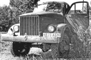 Топчихинский район Алтайского края. Июль 1984 года.